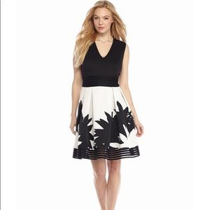 NWT Taylor Fit-and-Flare Dress with Lace Trim